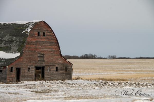 Old Barn I