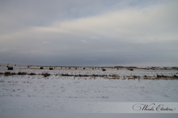 Hay Bales in North Dakota